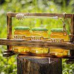 Predseda SZV M. Rusnák: Test SAV pomohol včelárom